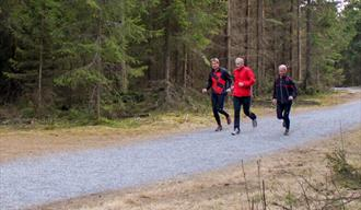 Walking trails at Skien Fritidspark