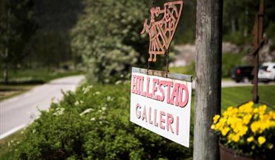 Hillestad Gallery