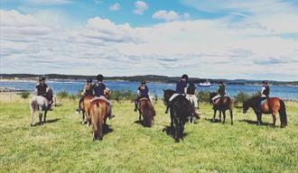 Horseback riding tours - Jomfruland