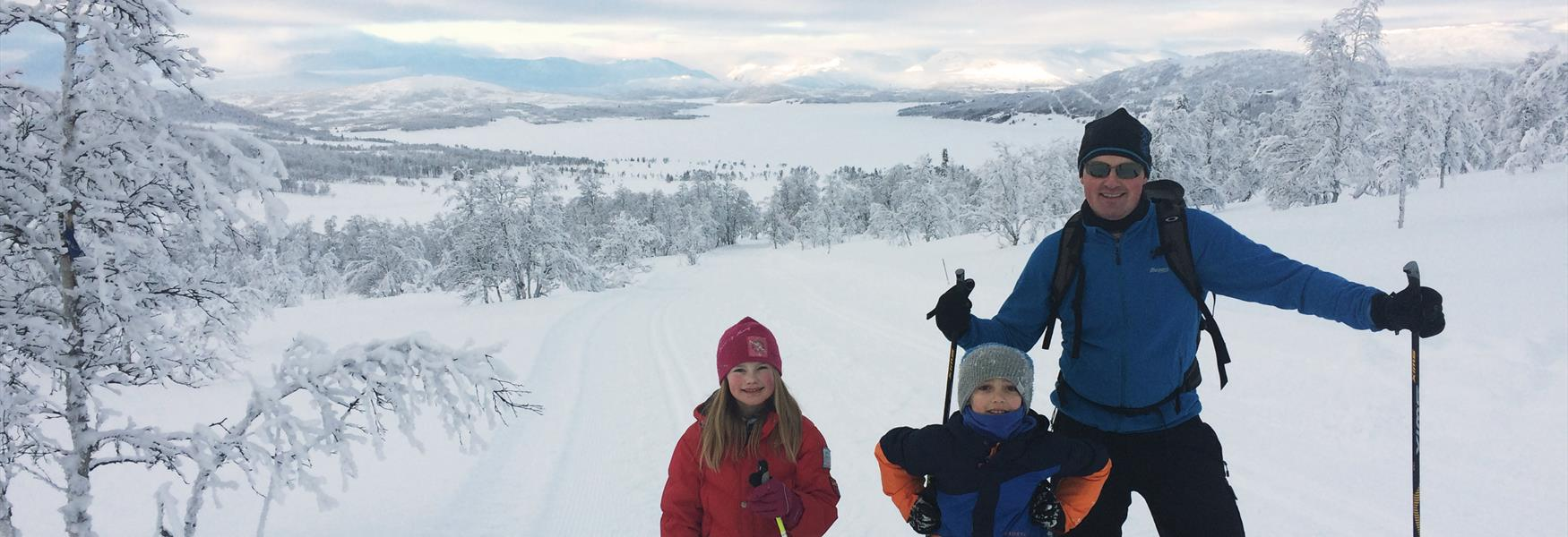 The feeling of winter in Telemark