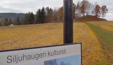 Siljuhaugen culture trail